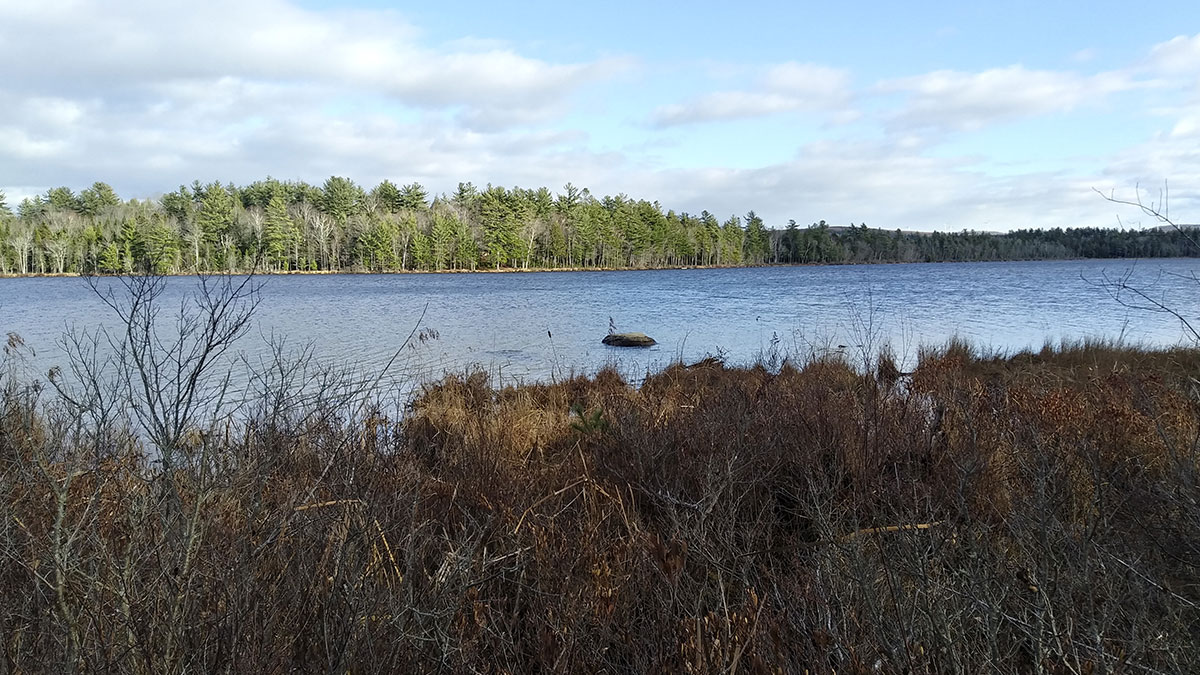 7 Acres – Lincoln, ME – Penobscot County