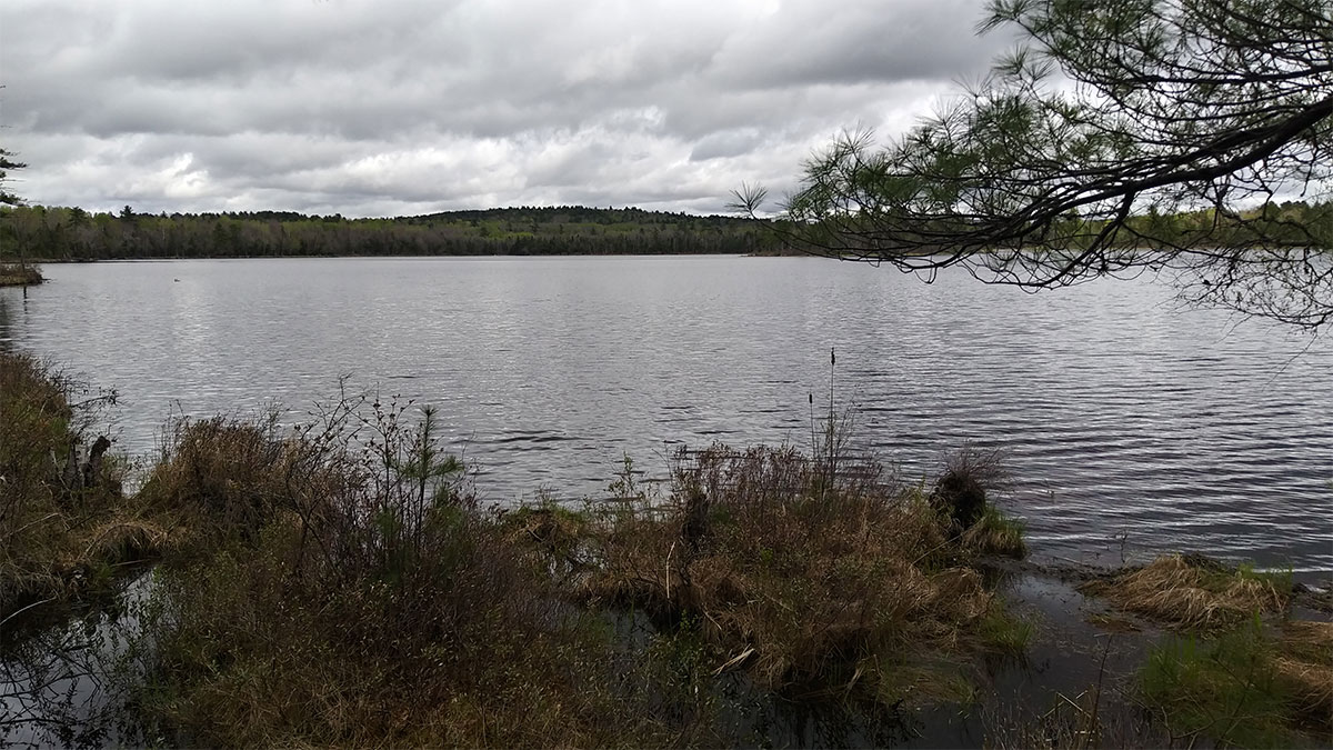 4.8 Acres – Lincoln, ME – Penobscot County