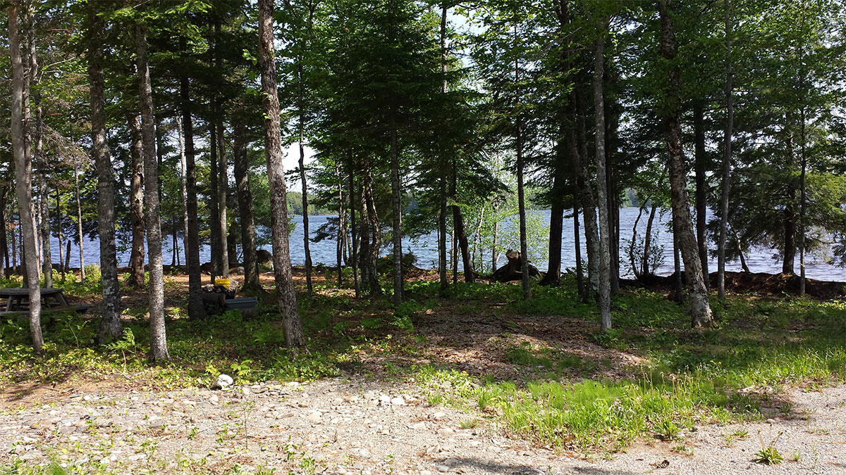 Common Lot on White Point Estates with access to Mattanawcook Lake